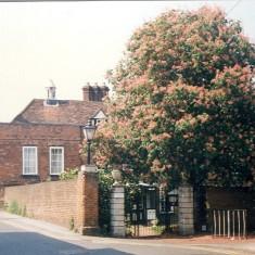 The Hertford Club, Lombard House, Bull Plain | Heather MacDonald