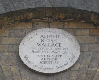Plaque In St Andrew Street, Hertford, commemorating the naturalist Alfred Russel Wallace