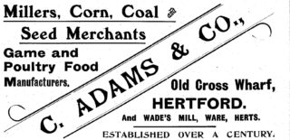 An advertisement for Adams & Co. in Kelly's Directory of Hertfordshire (1912 edition)