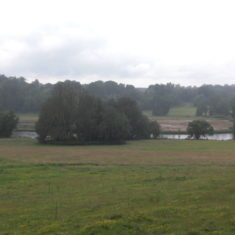 The view from the house to the lake