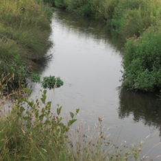 The new channel of the Mimram River redirected around the lakes.