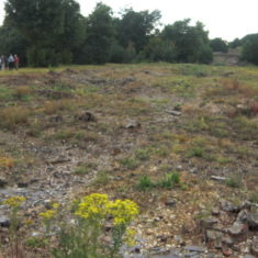 Part of the footprint of the old house