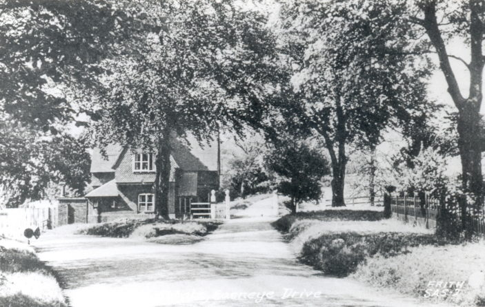 Easneye Lodge | Hertfordshire Archives and Local Studies