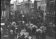Elephants in Fore Street