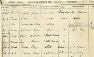 Page from the Register of Births in the workhouse, 1905   Hertfordshire Archives and Local Studies